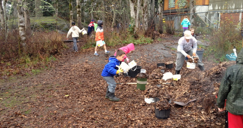 Active learning in our 'Naturescape'