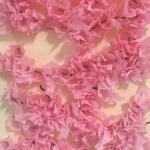 Div 6 – Cherry Blossoms
