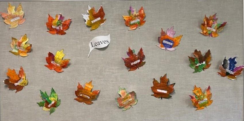 Fall Leaves – Div. 10